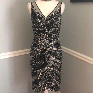 Stunning Adrianna Papell Dress
